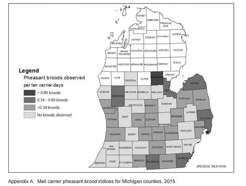 2015-11-17 00_11_03-www.michigan.gov_documents_dnr_mi_pheasant_status_2015_500876_7.pdf